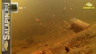Фидерные кормушки под водой на сильном течении [salapinru].