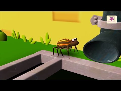 Incy Wincy Spider | 3D English Nursery Rhyme for Children | Periwinkle | Rhyme #49