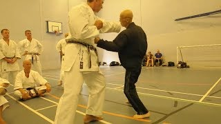 OLD is GOLD - Best Old Man Martial Arts