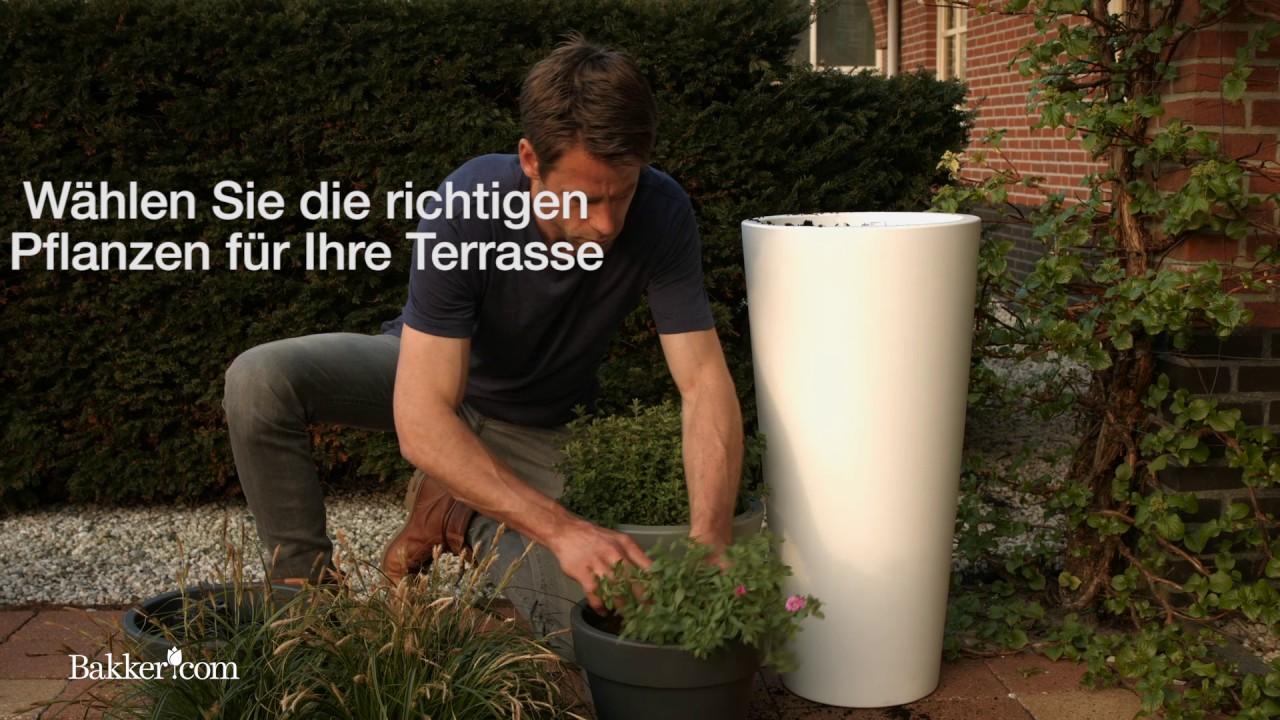 Garten Tipp 29: Terrasse verschönern - YouTube