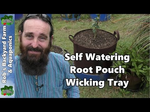 download Self Watering Root Pouch Wicking Tray