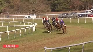 Vidéo de la course PMU PRIX CAPITAINE LABONDE