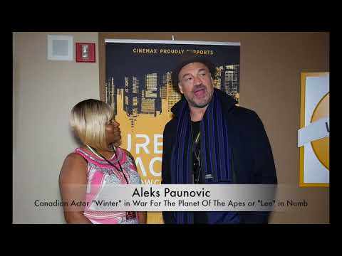 Visionary Minds Presents: Aleks Paunovic