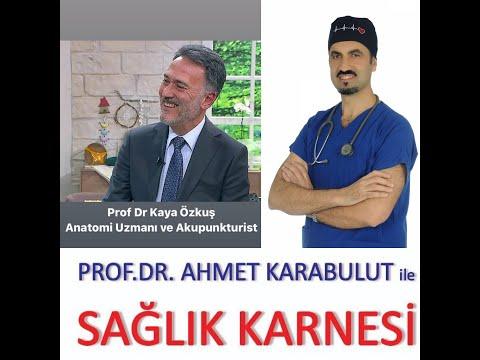 AKUPUNKTUR HANGİ HASTALIKLARDA UYGULANIR? - PROF DR KAYA ÖZKUŞ - PROF DR AHMET KARABULUT
