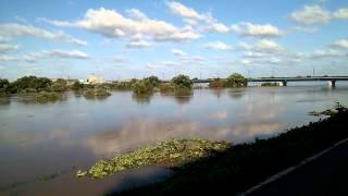 台風一過 岩木川乾橋上流から