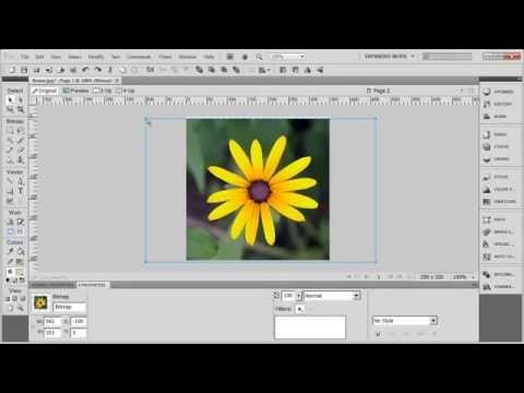 Tutorial: Adobe Fireworks CS5 for Beginners Lesson 11