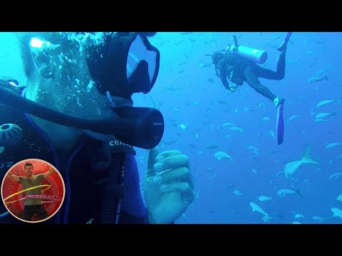 Ep 11: Diving with sharks at the Socorro Islands