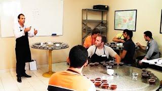 Curso forma classificadores e degustadores de café