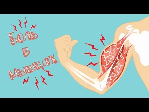 Почему мышцы болят