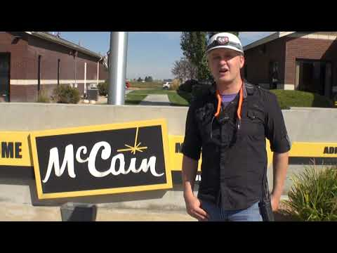 McCain Benefits: A great place to work