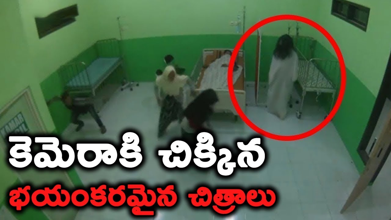 Download Truly Shocking & Horrifying Moments Caught on Camera    T Talks