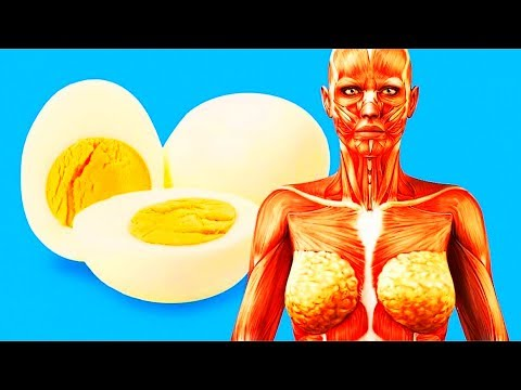 Thumbnail: 10 ASTONISHING FACTS ABOUT YOUR BODY