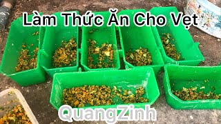 Làm Soft Food Cho Vẹt Và Giới Thiệu Bầy Lovebird | QuangVinh screenshot 1