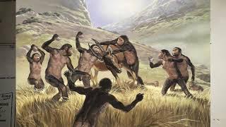 § 1. Древнейшие люди