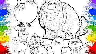 Desenholandia Colorindo Pets - A Vida Secreta dos Bichos 2 (Universal Pictures) HD Pinturas Crianças