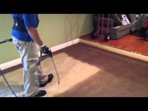 Carpet Dyeing Youtube
