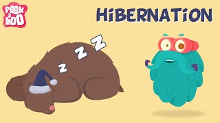 Hibernation | The Dr. Binocs Show | Learn Series for Kids