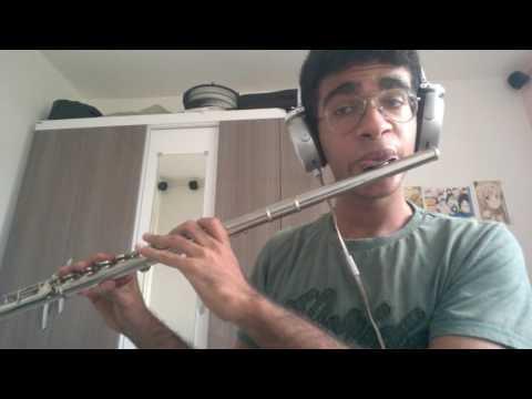 Naruto main theme - Cover flute Antony Andrey