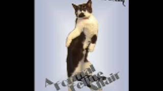 Phil Edwards - Tuxedo Cat Rag