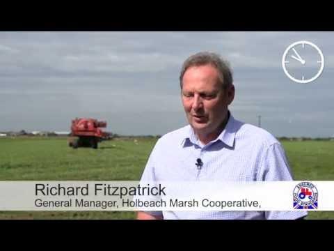 Richard Fitzpatrick - Red Tractor Pea Farmer