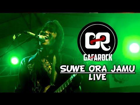 SUWE ORA JAMU (Live) - Gafarock