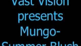 Vast Vision pres. Mungo - Summer Blush (Aly & Fila Remix)