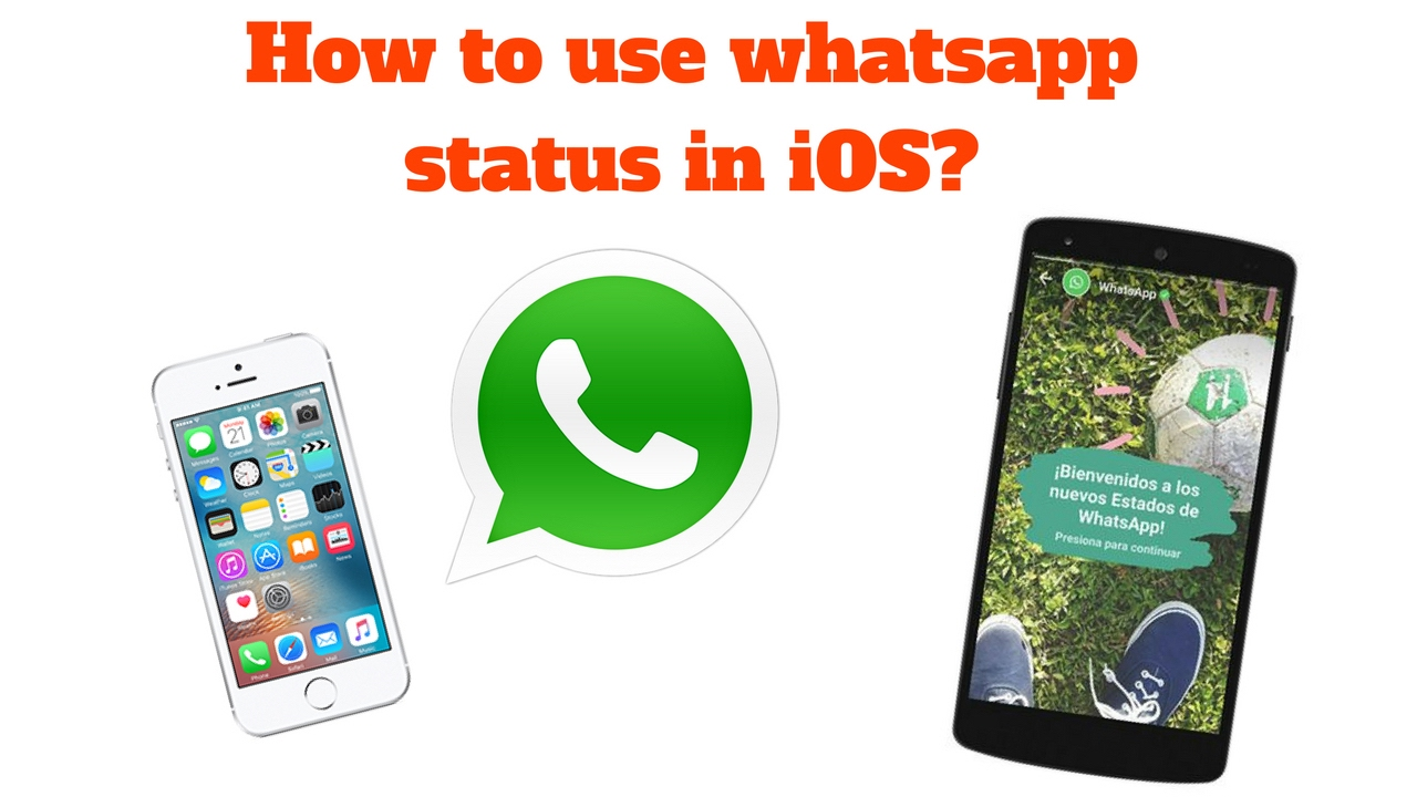 How To Use Whatsapp Status In Ios