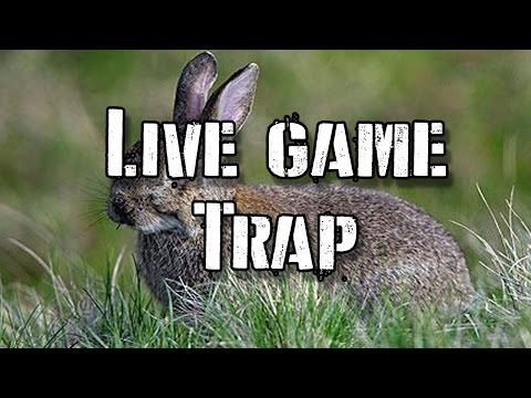 Catch Live Game With a Wood Cage Trap