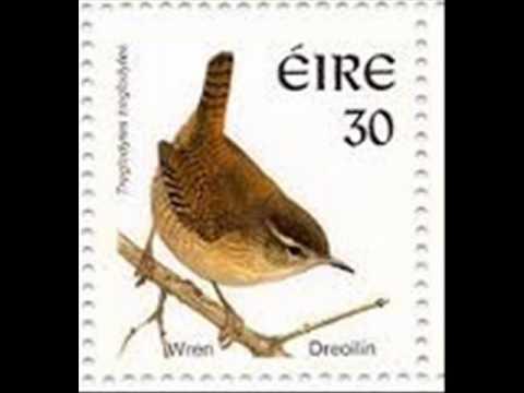 The Wren Song ( An Dreoilín ).wmv