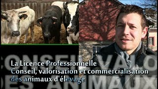 La licence Pro Productions animales