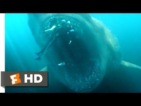 The Meg (2018) - Shark Cage vs. Megalodon Scene (5/10)   Movieclips
