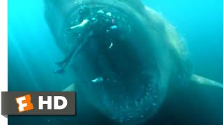 The Meg (2018) - Shark Cage vs. Megalodon Scene (5/10) | Movieclips