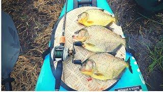 catch-n-cook-piranha-over-open-fire