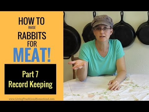 Raising Rabbits for Meat Part 7:  Record Keeping
