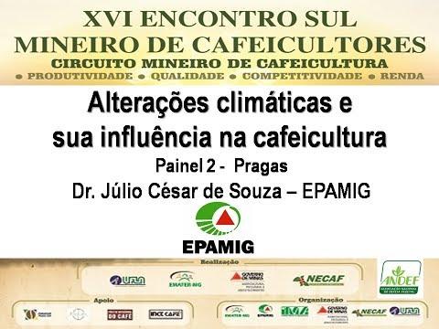 #CaféWebTV: Alterações climáticas e sua influência na cafeicultura Dr. Julio César Souza/ EPAMIG