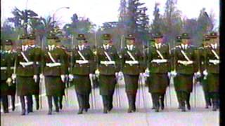Parada Militar 1994 Chile:Carabineros de Chile
