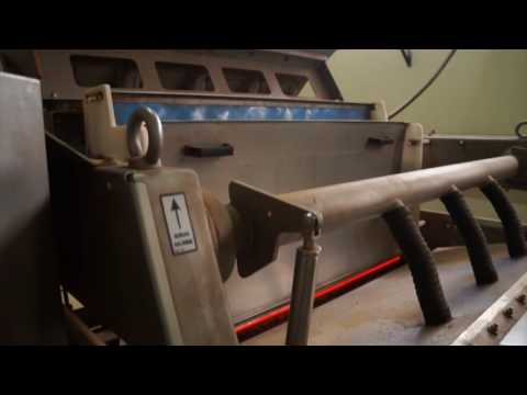 Raw hazelnut sorting machine Helius - TOMRA Sorting