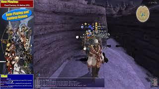 Final Fantasy XI Online (PC)