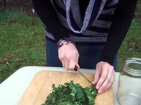 How To Make Herb-Infused Oil
