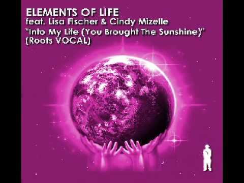 Elements Of Life Into My Life (You Brought The Sunshine) (Main Mix)