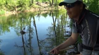 Рыболов-эксперт. Ловля голавля на поверхностные приманки