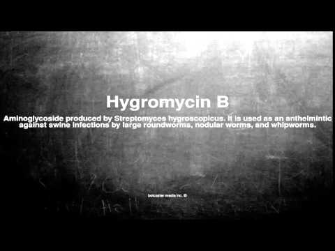Medical vocabulary: What does Hygromycin B mean