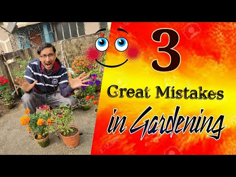 3 Great Mistakes in Gardening one should never do. Major mistakes in gardening