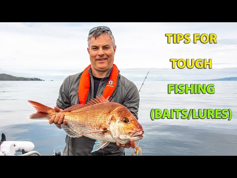 Bait Or Lure Fishing - Tips To Try When The Boat Fishing Is Hard.