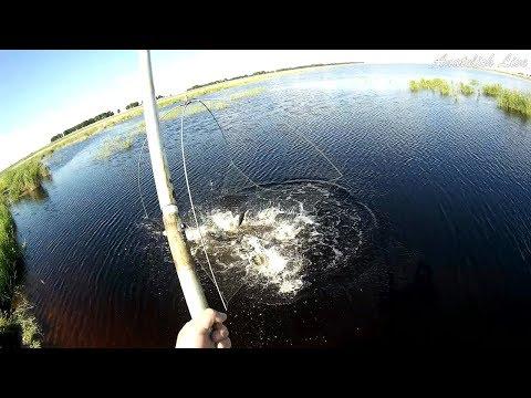 Лучшие моменты прошедшего сезона. Рыбалка на паук, фидер, поплавок, джиг.