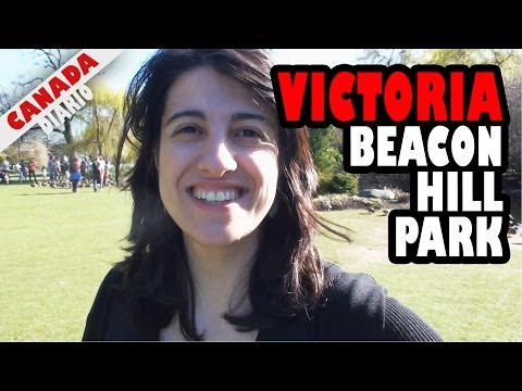 VICTORIA - Parte 6 - Pavão no Beacon Hill Park