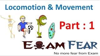 Biology Locomotion & Movement part 1 (Introduction) CBSE class 11 XI