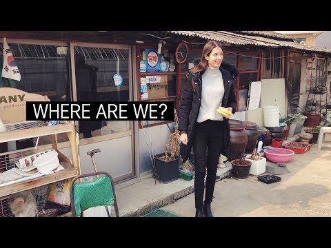 VISA STRESS | & A Day Out of Seoul 국제커플의 고충 - 정부사이트 업데이트가 시급해요ㅠ