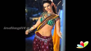 Gabriela Bertante in Indian Dress   Indian Actress   Tollywood Cinema   Telugu Movie