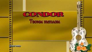 Алексей Фролов гр. Condor Твоим теплом